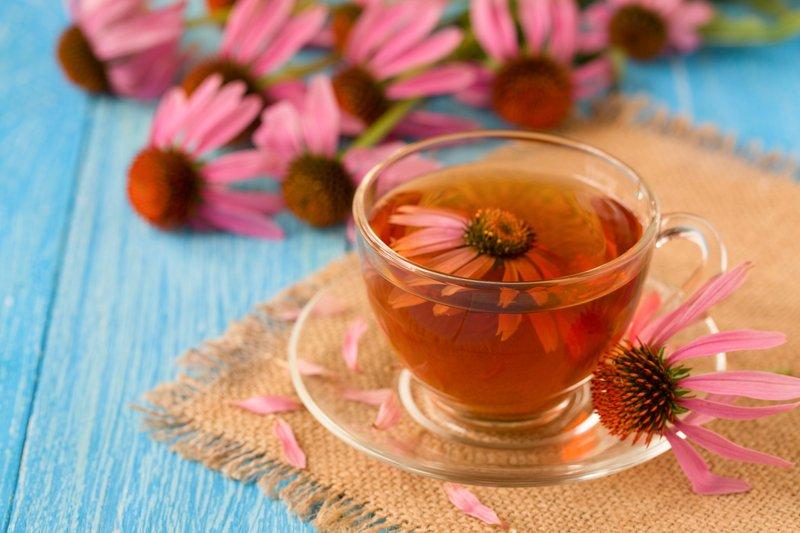 Ceai echinacea